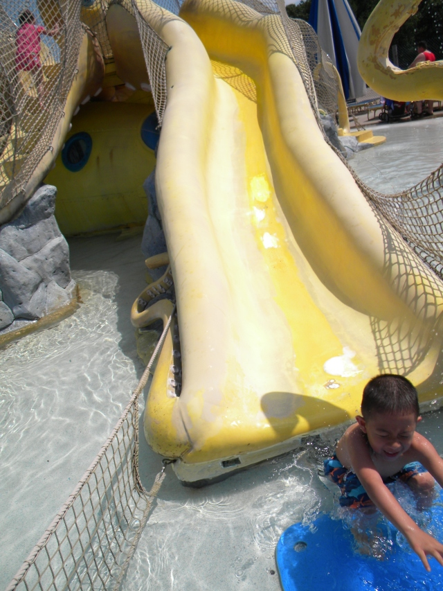 yellow water slide/blue landing pad, noah's ark