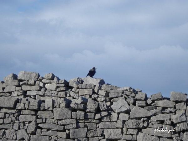 dun aengus fort, aran islands, ireland