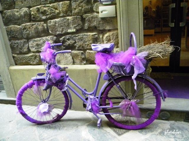 purple bike taken in florence, italy